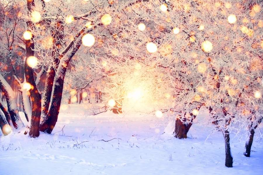 winter-wonderland-weihanchtsfeier